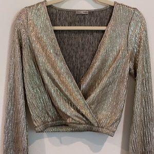 Zara Shimmer Crop Top